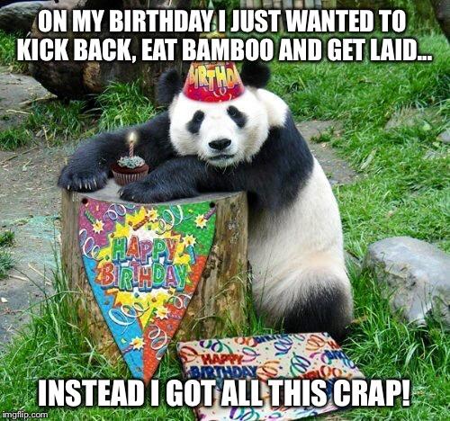 pflmd panda birthday meme generator imgflip