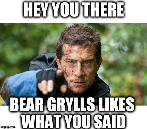 HEY YOU THERE BEAR GRYLLS LIKES WHAT YOU SAID | image tagged in bear grylls | made w/ Imgflip meme maker