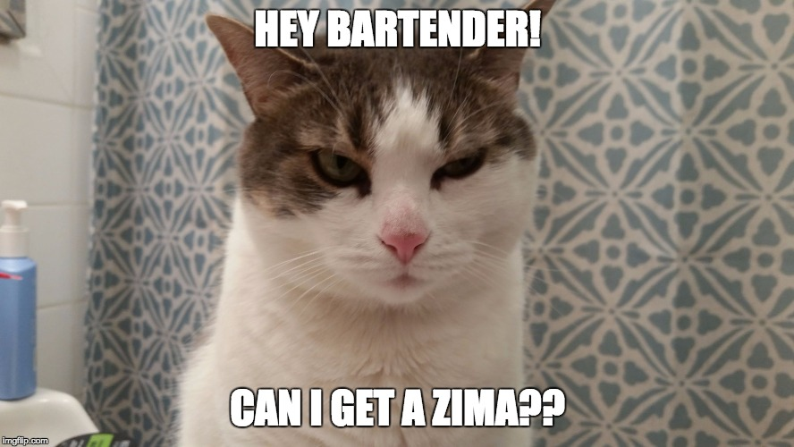 cat ain't havin it | HEY BARTENDER! CAN I GET A ZIMA?? | image tagged in zima,90's | made w/ Imgflip meme maker