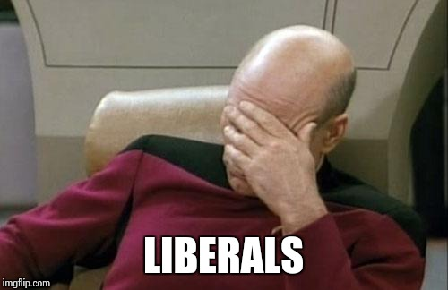 Captain Picard Facepalm Meme | LIBERALS | image tagged in memes,captain picard facepalm | made w/ Imgflip meme maker