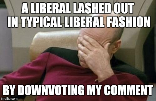Captain Picard Facepalm Meme | A LIBERAL LASHED OUT IN TYPICAL LIBERAL FASHION BY DOWNVOTING MY COMMENT | image tagged in memes,captain picard facepalm | made w/ Imgflip meme maker