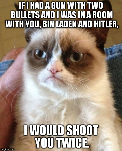 Grumpy Cat | IF I HAD A GUN WITH TWO BULLETS AND I WAS IN A ROOM WITH YOU, BIN LADEN AND HITLER, I WOULD SHOOT YOU TWICE. | image tagged in memes,grumpy cat | made w/ Imgflip meme maker