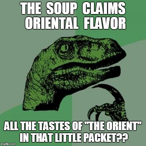 "Philosoraptor Meme | THE  SOUP  CLAIMS  ORIENTAL  FLAVOR ALL THE TASTES OF ""THE ORIENT"" IN THAT LITTLE PACKET?? 