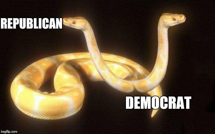 Image result for repub democrat snake
