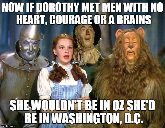 NOW IF DOROTHY MET MEN WITHNO HEART, COURAGE OR A BRAINS SHE WOULDN'T BE IN OZSHE'D BE IN WASHINGTON, D.C. | image tagged in wizard of oz,political,politics | made w/ Imgflip meme maker