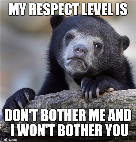 Confession Bear Meme | MY RESPECT LEVEL IS DON'T BOTHER ME AND I WON'T BOTHER YOU | image tagged in memes,confession bear | made w/ Imgflip meme maker