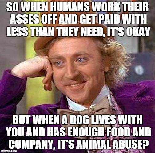 Creepy Condescending Wonka Meme | SO WHEN HUMANS WORK THEIR ASSES OFF AND GET PAID WITH LESS THAN THEY NEED, IT'S OKAY BUT WHEN A DOG LIVES WITH YOU AND HAS ENOUGH FOOD AND C | image tagged in memes,creepy condescending wonka | made w/ Imgflip meme maker
