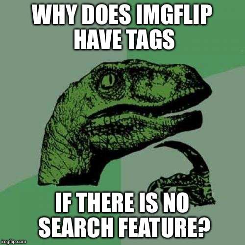 Philosoraptor | WHY DOES IMGFLIP HAVE TAGS IF THERE IS NO SEARCH FEATURE? | image tagged in memes,philosoraptor | made w/ Imgflip meme maker