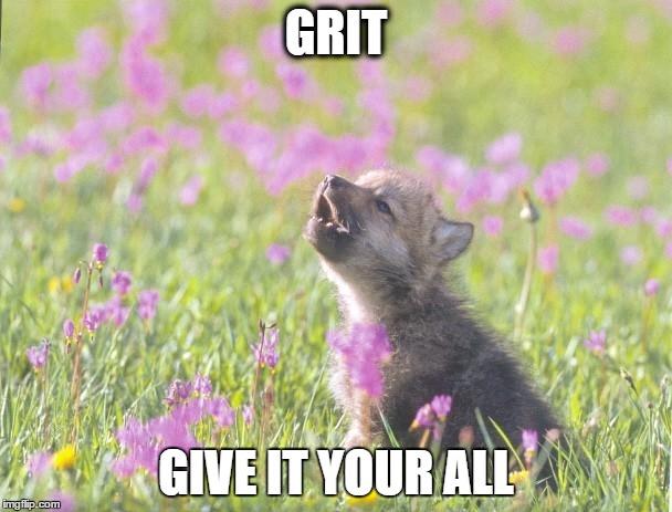 Baby Insanity Wolf Memes  Imgflip