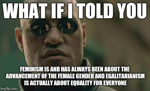 Matrix Morpheus Meme | WHAT IF I TOLD YOU FEMINISM IS AND HAS ALWAYS BEEN ABOUT THE ADVANCEMENT OF THE FEMALE GENDER AND EGALITARIANISM IS ACTUALLY ABOUT EQUALITY  | image tagged in memes,matrix morpheus | made w/ Imgflip meme maker