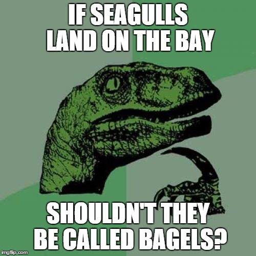 Philosoraptor Meme | IF SEAGULLS LAND ON THE BAY SHOULDN'T THEY BE CALLED BAGELS? | image tagged in memes,philosoraptor | made w/ Imgflip meme maker