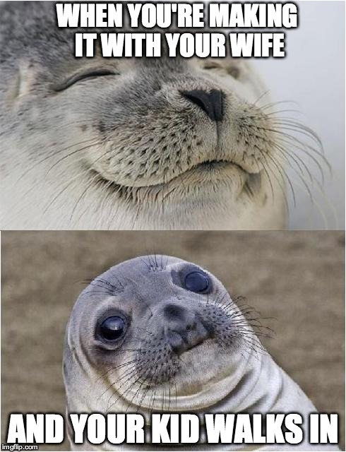 Awkward moment seal | WHEN YOU'RE MAKING IT WITH YOUR WIFE AND YOUR KID WALKS IN | image tagged in awkward moment seal | made w/ Imgflip meme maker