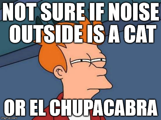 Futurama Fry Meme | NOT SURE IF NOISE OUTSIDE IS A CAT OR EL CHUPACABRA | image tagged in memes,futurama fry,cryptids | made w/ Imgflip meme maker