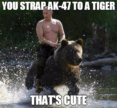 Putin Thats Cute | YOU STRAP AK-47 TO A TIGER THAT'S CUTE | image tagged in putin thats cute | made w/ Imgflip meme maker