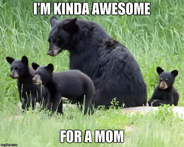 Black bears | I'M KINDA AWESOME FOR A MOM | image tagged in black bears | made w/ Imgflip meme maker