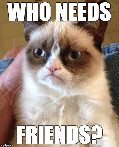 Grumpy Cat Meme | WHO NEEDS FRIENDS? | image tagged in memes,grumpy cat | made w/ Imgflip meme maker