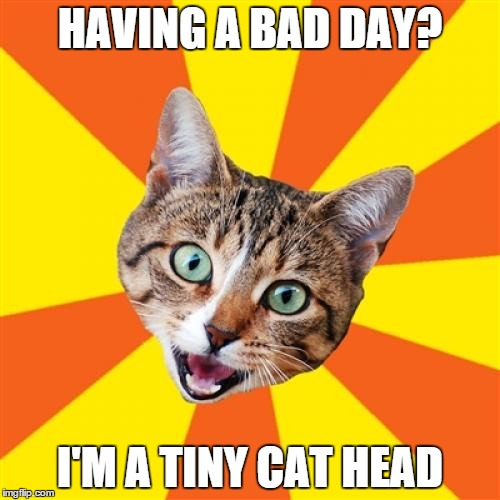 Bad Advice Cat Meme | HAVING A BAD DAY? I'M A TINY CAT HEAD | image tagged in memes,bad advice cat | made w/ Imgflip meme maker