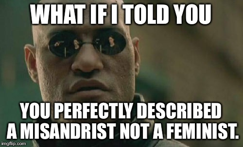 Matrix Morpheus Meme | WHAT IF I TOLD YOU YOU PERFECTLY DESCRIBED A MISANDRIST NOT A FEMINIST. | image tagged in memes,matrix morpheus | made w/ Imgflip meme maker