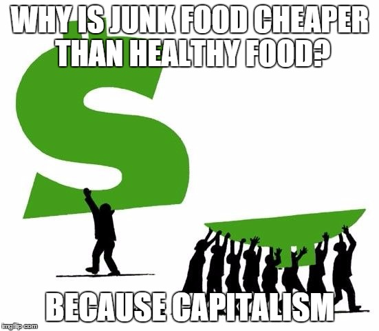 WHY IS JUNK FOOD CHEAPER THAN HEALTHY FOOD? BECAUSE CAPITALISM | image tagged in because capitalism | made w/ Imgflip meme maker