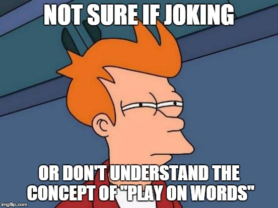 "Futurama Fry Meme | NOT SURE IF JOKING OR DON'T UNDERSTAND THE CONCEPT OF ""PLAY ON WORDS"" 