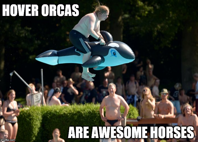 look at my horse | HOVER ORCAS ARE AWESOME HORSES | image tagged in hover,orca,horse | made w/ Imgflip meme maker