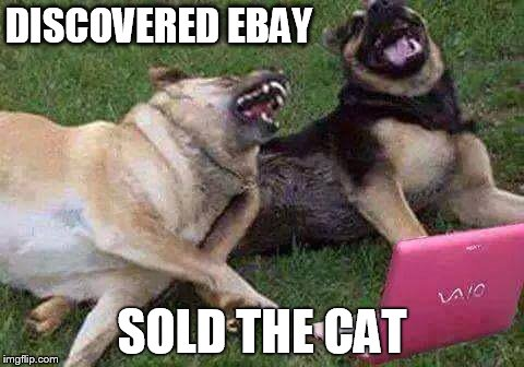 DISCOVERED EBAY SOLD THE CAT | image tagged in funny dogs | made w/ Imgflip meme maker