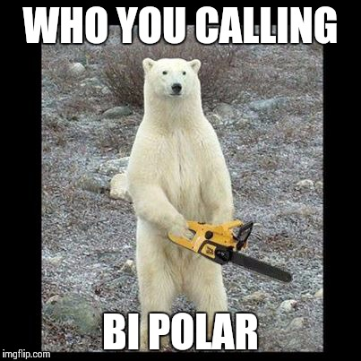 Chainsaw Bear Meme | WHO YOU CALLING BI POLAR | image tagged in memes,chainsaw bear | made w/ Imgflip meme maker