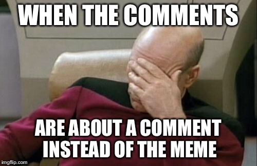 Captain Picard Facepalm Meme | WHEN THE COMMENTS ARE ABOUT A COMMENT INSTEAD OF THE MEME | image tagged in memes,captain picard facepalm | made w/ Imgflip meme maker