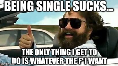Single Life Funny Meme : 38 being single quotes and memes that say it all best wishes and
