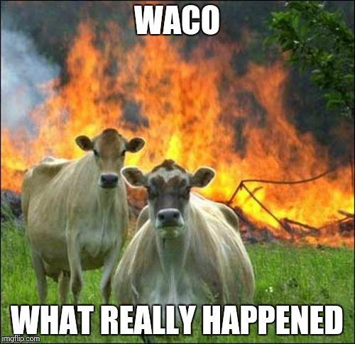 pu4an thepsychedelicjesus's images imgflip,Waco Meme