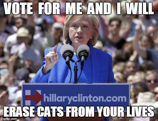 Hillary | VOTE  FOR  ME  AND  I  WILL ERASE CATS FROM YOUR LIVES | image tagged in hillary | made w/ Imgflip meme maker