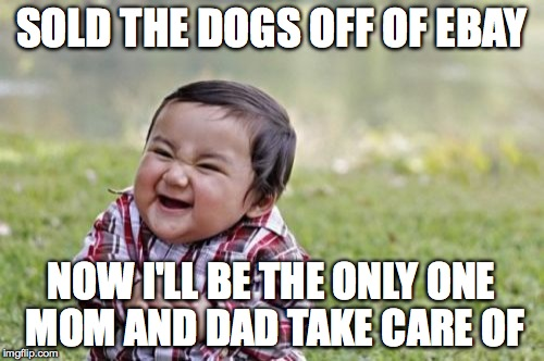 Evil Toddler Meme | SOLD THE DOGS OFF OF EBAY NOW I'LL BE THE ONLY ONE MOM AND DAD TAKE CARE OF | image tagged in memes,evil toddler | made w/ Imgflip meme maker