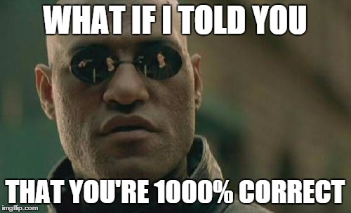 Matrix Morpheus Meme | WHAT IF I TOLD YOU THAT YOU'RE 1000% CORRECT | image tagged in memes,matrix morpheus | made w/ Imgflip meme maker