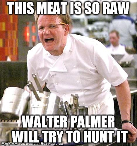Chef Gordon Ramsay Meme | THIS MEAT IS SO RAW WALTER PALMER WILL TRY TO HUNT IT | image tagged in memes,chef gordon ramsay | made w/ Imgflip meme maker