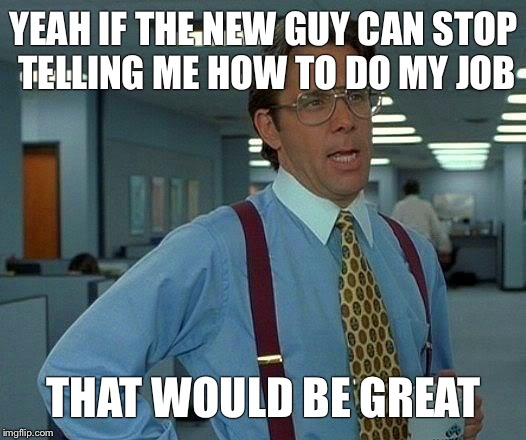 That Would Be Great Meme | YEAH IF THE NEW GUY CAN STOP TELLING ME HOW TO DO MY JOB THAT WOULD BE GREAT | image tagged in memes,that would be great | made w/ Imgflip meme maker