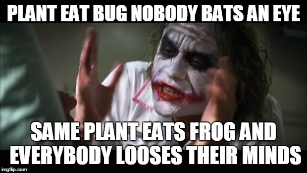 PLANT EAT BUG NOBODY BATS AN EYE SAME PLANT EATS FROG AND EVERYBODY LOOSES THEIR MINDS | image tagged in memes,and everybody loses their minds | made w/ Imgflip meme maker