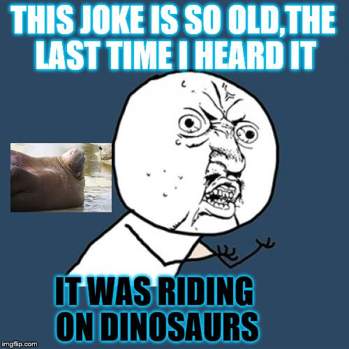 Y U No Meme | THIS JOKE IS SO OLD,THE LAST TIME I HEARD IT IT WAS RIDING ON DINOSAURS | image tagged in memes,y u no | made w/ Imgflip meme maker