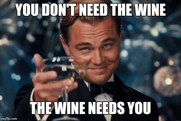 Leonardo Dicaprio Cheers Meme | YOU DON'T NEED THE WINE THE WINE NEEDS YOU | image tagged in memes,leonardo dicaprio cheers | made w/ Imgflip meme maker