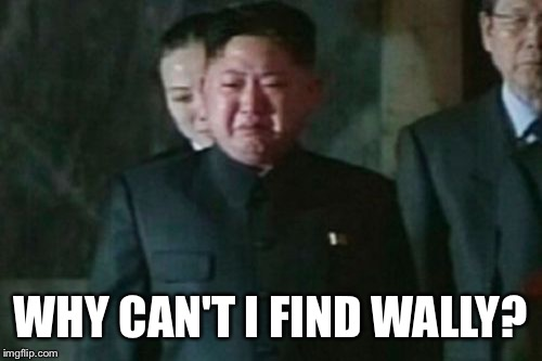 Kim Jong Un Sad | WHY CAN'T I FIND WALLY? | image tagged in memes,kim jong un sad | made w/ Imgflip meme maker
