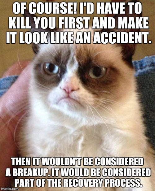 Grumpy Cat Meme | OF COURSE! I'D HAVE TO KILL YOU FIRST AND MAKE IT LOOK LIKE AN ACCIDENT. THEN IT WOULDN'T BE CONSIDERED A BREAKUP. IT WOULD BE CONSIDERED PA | image tagged in memes,grumpy cat | made w/ Imgflip meme maker