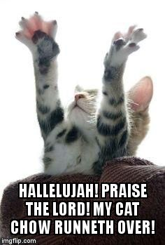Hallelujah Kitty  | HALLELUJAH! PRAISE THE LORD! MY CAT CHOW RUNNETH OVER! | image tagged in amen cat,hallelujah,praise the lord,kitty,kitty cat | made w/ Imgflip meme maker