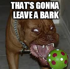 THAT'S GONNA LEAVE A BARK | made w/ Imgflip meme maker