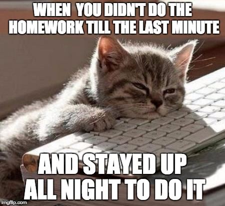 I always do my homework at night