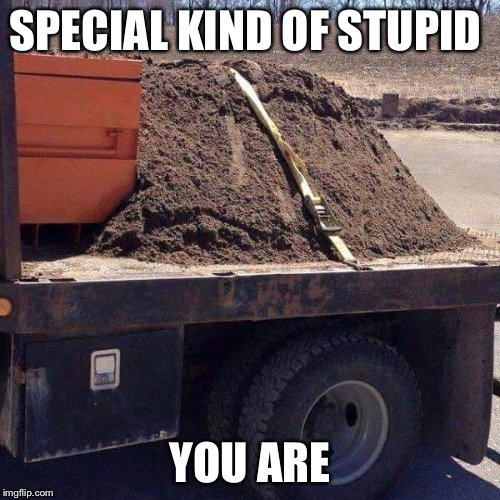 Special kind of stupid  | SPECIAL KIND OF STUPID YOU ARE | image tagged in special kind of stupid,stupidity,memes,funny,funny memes | made w/ Imgflip meme maker
