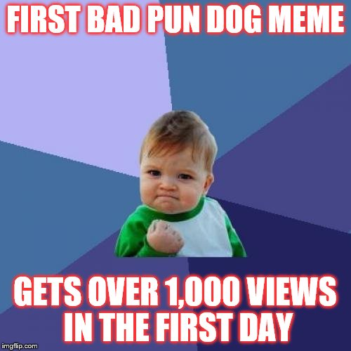 FIRST BAD PUN DOG MEME GETS OVER 1,000 VIEWS IN THE FIRST DAY | image tagged in memes,success kid | made w/ Imgflip meme maker