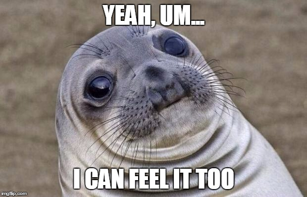 Awkward Moment Sealion Meme | YEAH, UM... I CAN FEEL IT TOO | image tagged in memes,awkward moment sealion | made w/ Imgflip meme maker