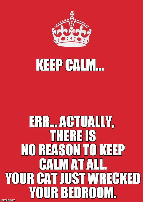 Keep Calm And Carry On Red | KEEP CALM... ERR... ACTUALLY, THERE IS NO REASON TO KEEP CALM AT ALL. YOUR CAT JUST WRECKED YOUR BEDROOM. | image tagged in memes,keep calm and carry on red | made w/ Imgflip meme maker