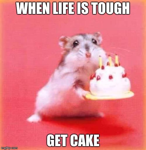 Create A Birthday Cake Meme