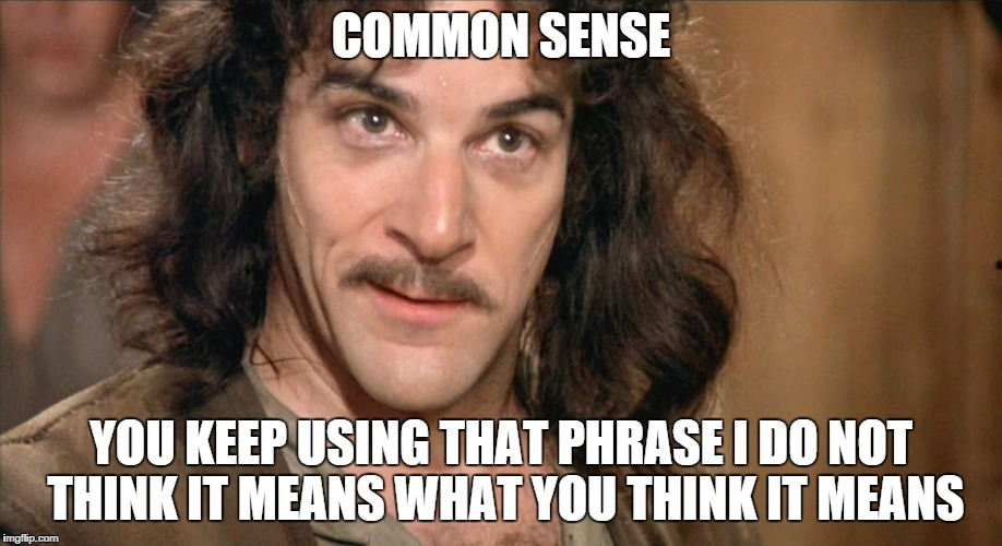 COMMON SENSE YOU KEEP USING THAT PHRASE I DO NOT THINK IT MEANS WHAT YOU THINK IT MEANS | image tagged in inigo montoya,common sense | made w/ Imgflip meme maker