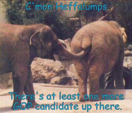 GOP Candidates Funny | C'mon Heffalumps There's at least one more GOP candidate up there. | image tagged in gop | made w/ Imgflip meme maker